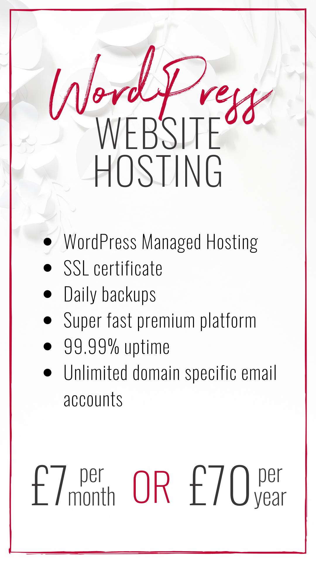 WordPress Website Hosting Package